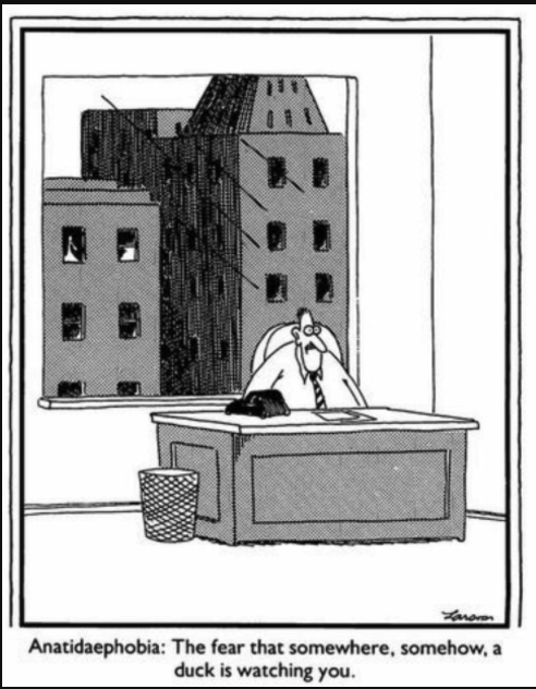 Image of a Far Side cartoon: Single panel comic of a worried man sitting at a desk. The man faces the reader. Behind the man is a large picture window. In one of the buildings behind the man, a duck is visible in an upper window and is staring at the back of the man's head.